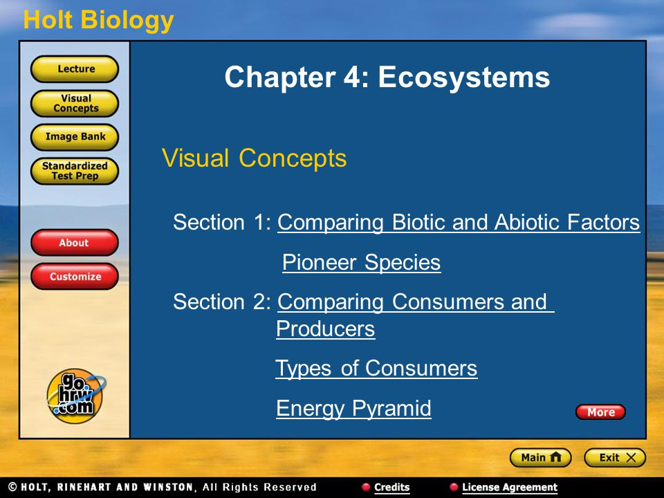 Holt Biology Chapter 4: Ecosystems Visual Concepts Section 1: Comparing Biotic and Abiotic FactorsComparing Biotic and Abiotic Factors Pioneer Species Section 2: Comparing Consumers and ProducersComparing Consumers andProducers Types of Consumers Energy Pyramid