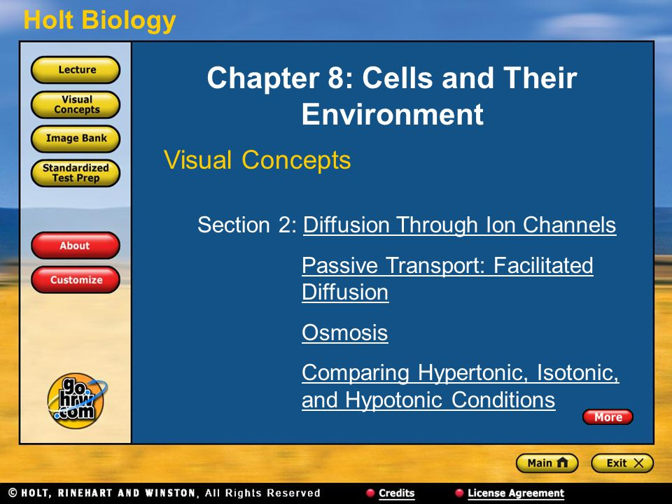 Holt Biology Chapter 8: Cells and Their Environment Visual Concepts Section 2: Diffusion Through Ion ChannelsDiffusion Through Ion Channels Passive Transport: Facilitated DiffusionPassive Transport: FacilitatedDiffusion Osmosis Comparing Hypertonic, Isotonic, and Hypotonic ConditionsComparing Hypertonic, Isotonic,and Hypotonic Conditions