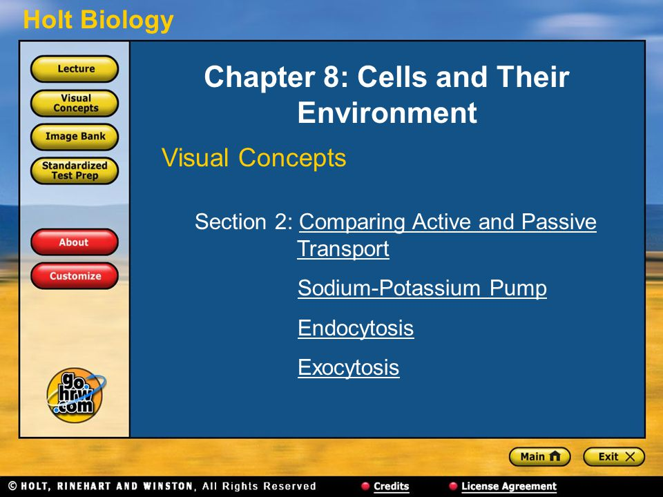 Holt Biology Chapter 8: Cells and Their Environment Visual Concepts Section 2: Comparing Active and Passive TransportComparing Active and PassiveTransport Sodium-Potassium Pump Endocytosis Exocytosis