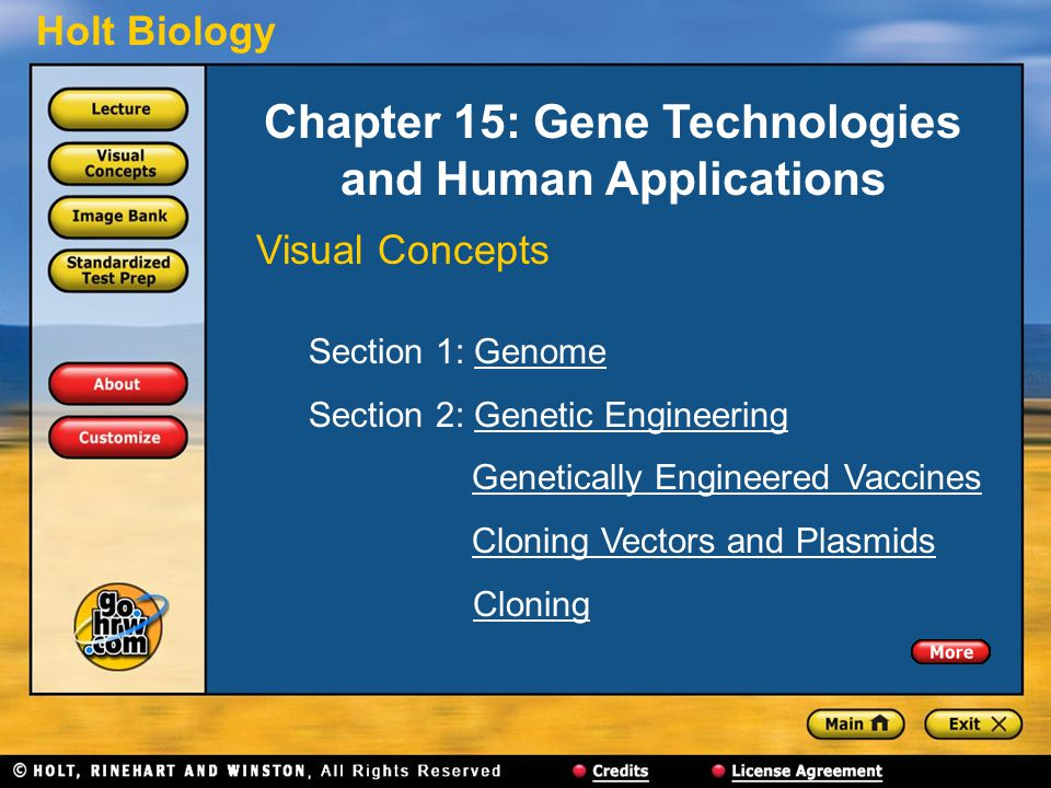 Holt Biology Chapter 15: Gene Technologies and Human Applications Visual Concepts Section 1: GenomeGenome Section 2: Genetic EngineeringGenetic Engine