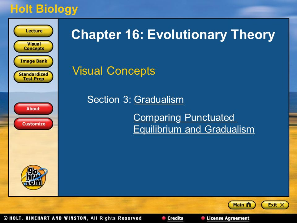 Holt Biology Chapter 16: Evolutionary Theory Visual Concepts Section 3: GradualismGradualism Comparing Punctuated Equilibrium and GradualismComparing