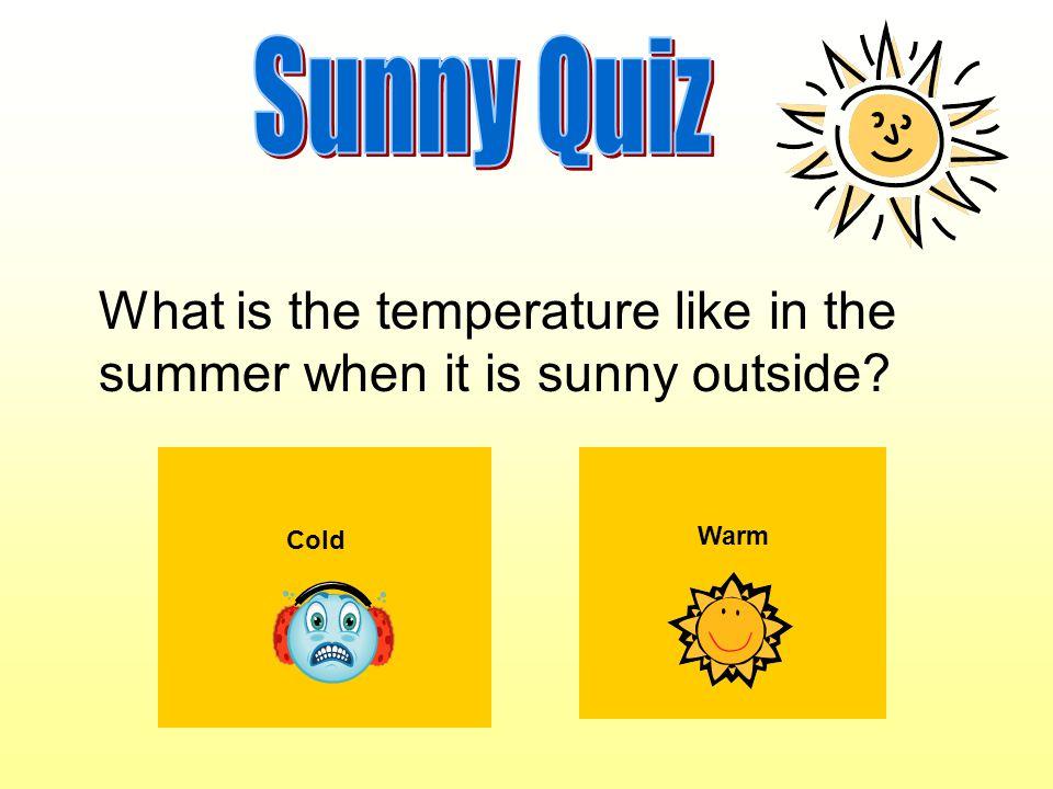 Wear sunscreen Wear a coat What should you do when it's sunny?