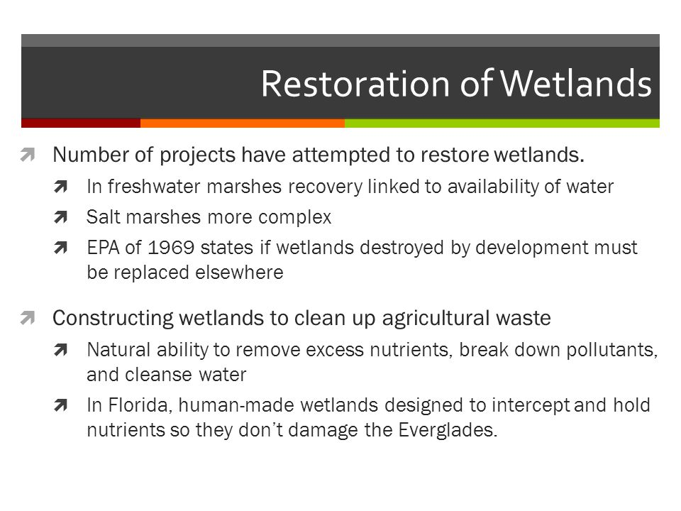 Restoration of Wetlands  Number of projects have attempted to restore wetlands.