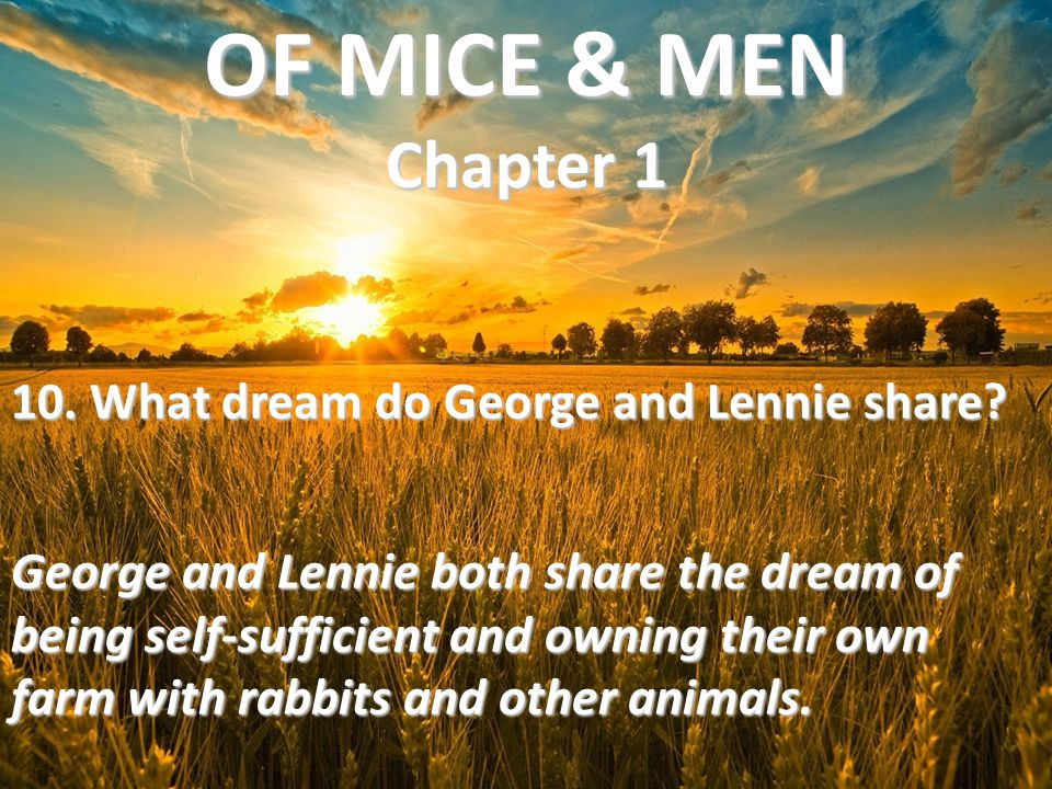 10. What dream do George and Lennie share? George and Lennie both share the dream of being self-sufficient and owning their own farm with rabbits and