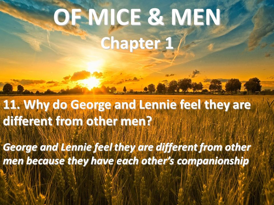 11. Why do George and Lennie feel they are different from other men? George and Lennie feel they are different from other men because they have each o
