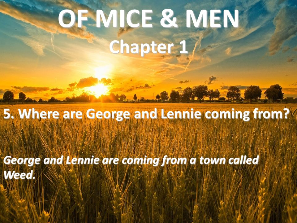 5. Where are George and Lennie coming from? George and Lennie are coming from a town called Weed. OF MICE & MEN Chapter 1