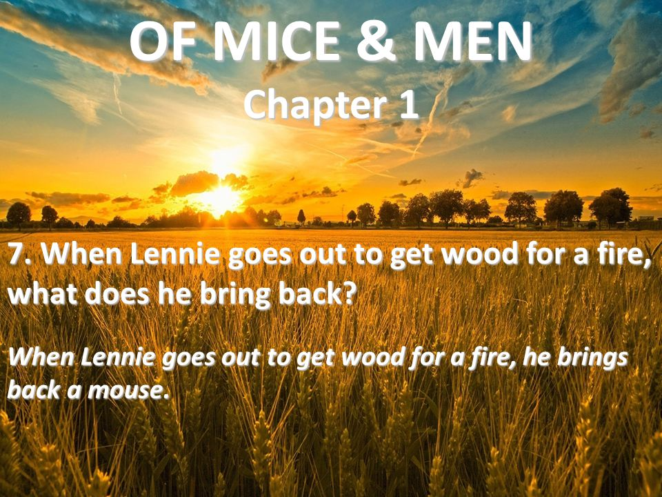 7. When Lennie goes out to get wood for a fire, what does he bring back? When Lennie goes out to get wood for a fire, he brings back a mouse. OF MICE