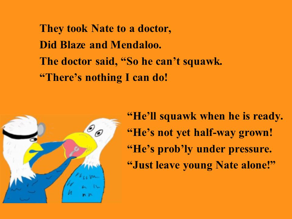 They took Nate to a doctor, Did Blaze and Mendaloo.