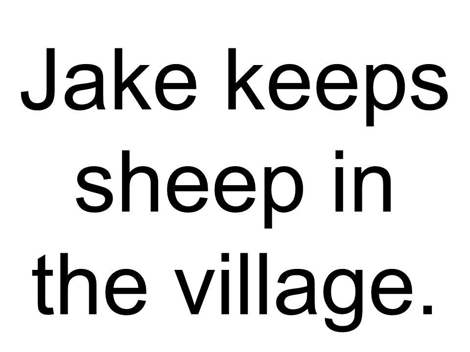 Jake keeps sheep in the village.