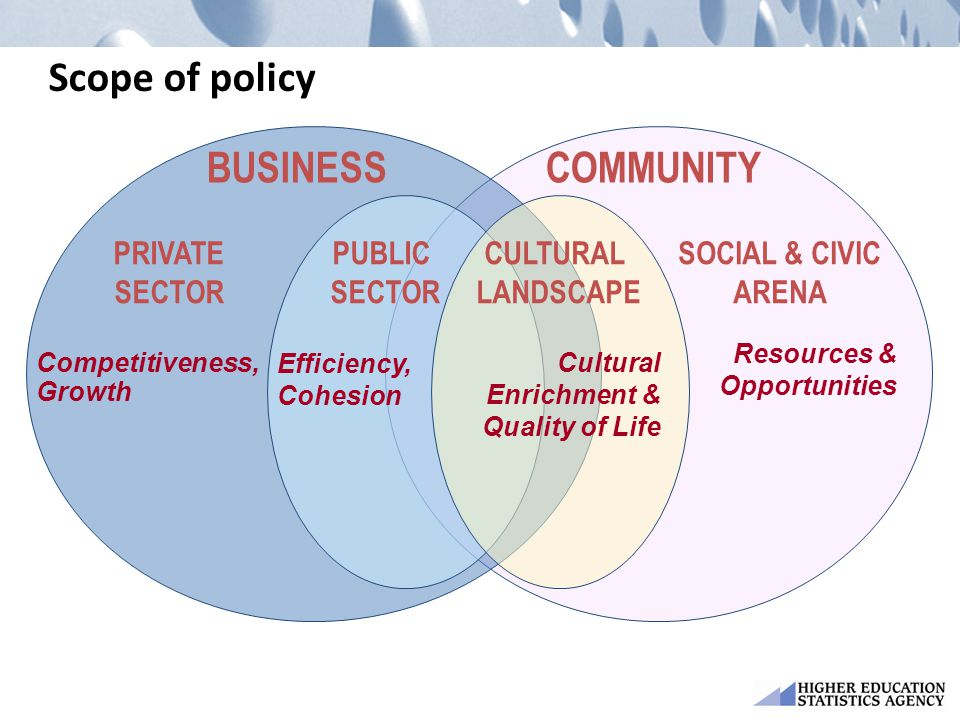 Scope of policy COMMUNITY PUBLIC SECTOR CULTURAL LANDSCAPE BUSINESS Competitiveness, Growth Efficiency, Cohesion Cultural Enrichment & Quality of Life