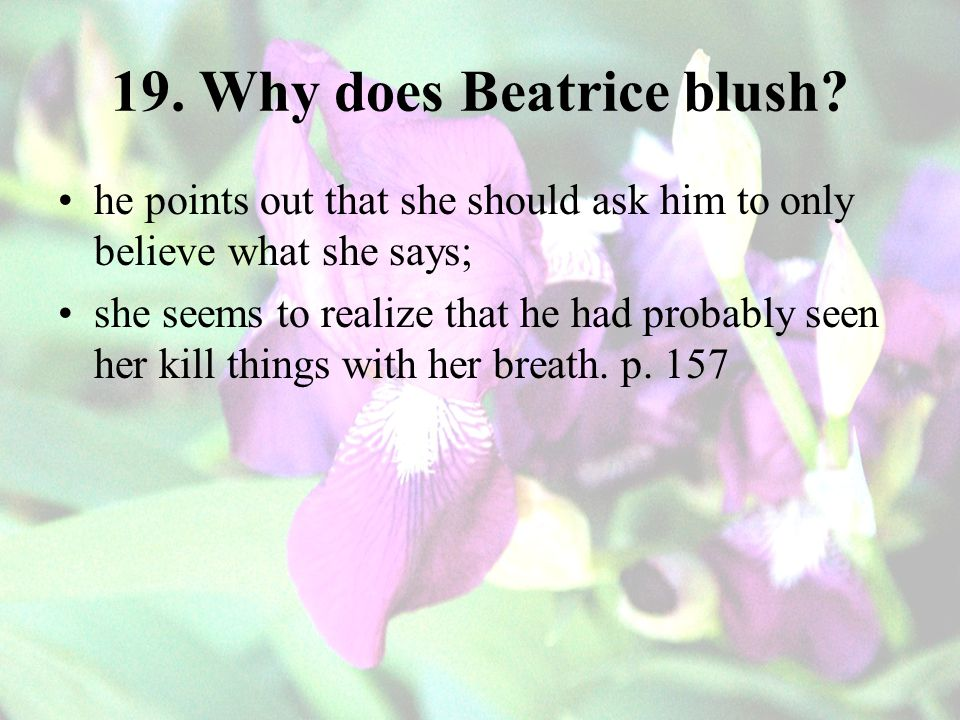 19.Why does Beatrice blush.
