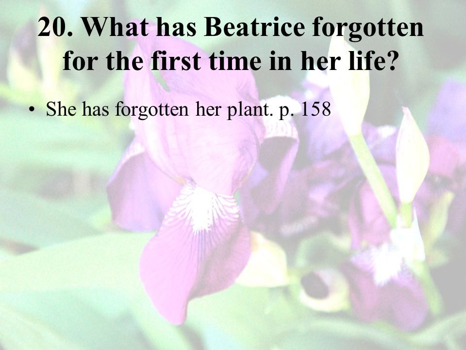 20. What has Beatrice forgotten for the first time in her life? She has forgotten her plant. p. 158
