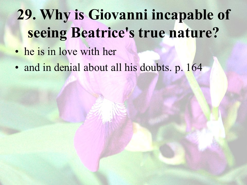29.Why is Giovanni incapable of seeing Beatrice s true nature.