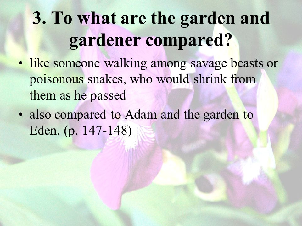 3.To what are the garden and gardener compared.