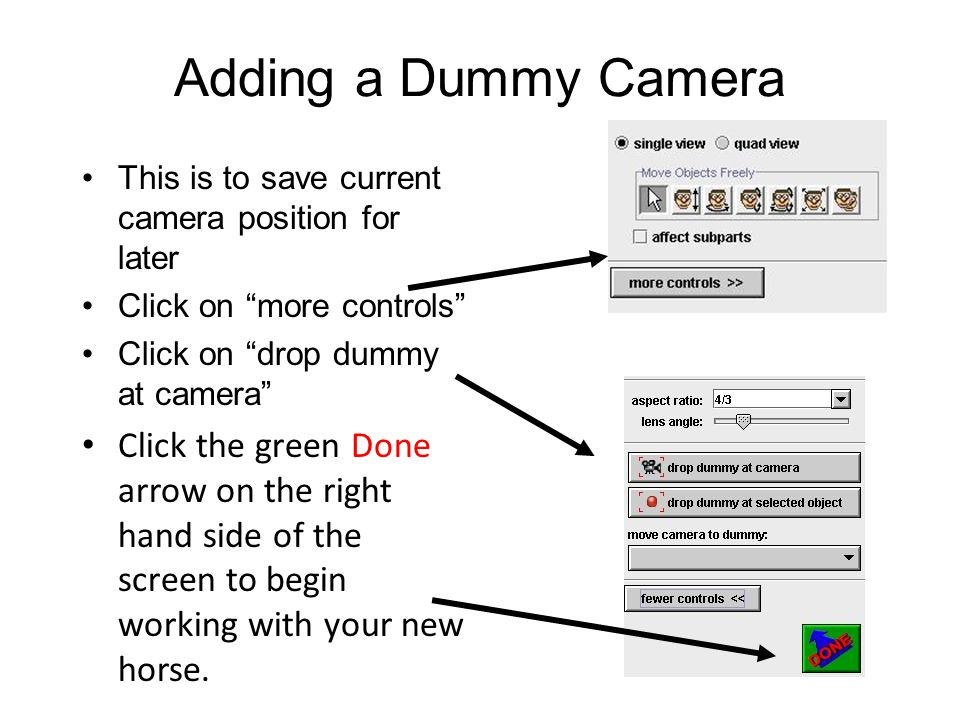 Adding a Dummy Camera This is to save current camera position for later Click on more controls Click on drop dummy at camera Click the green Done arrow on the right hand side of the screen to begin working with your new horse.