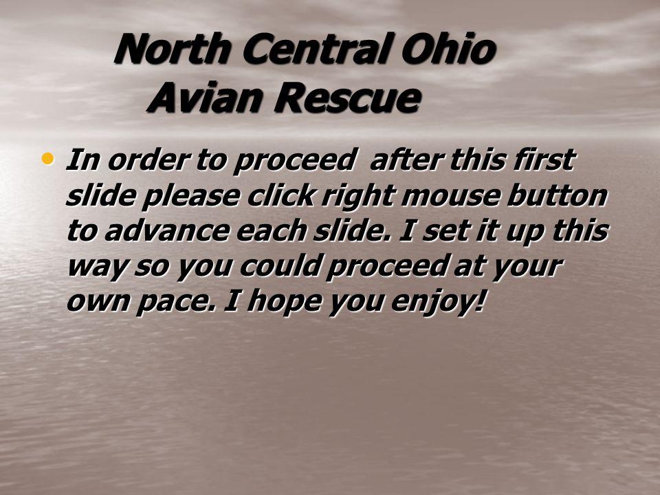 North Central Ohio Avian Rescue North Central Ohio Avian Rescue In order to proceed after this first slide please click right mouse button to advance each slide.