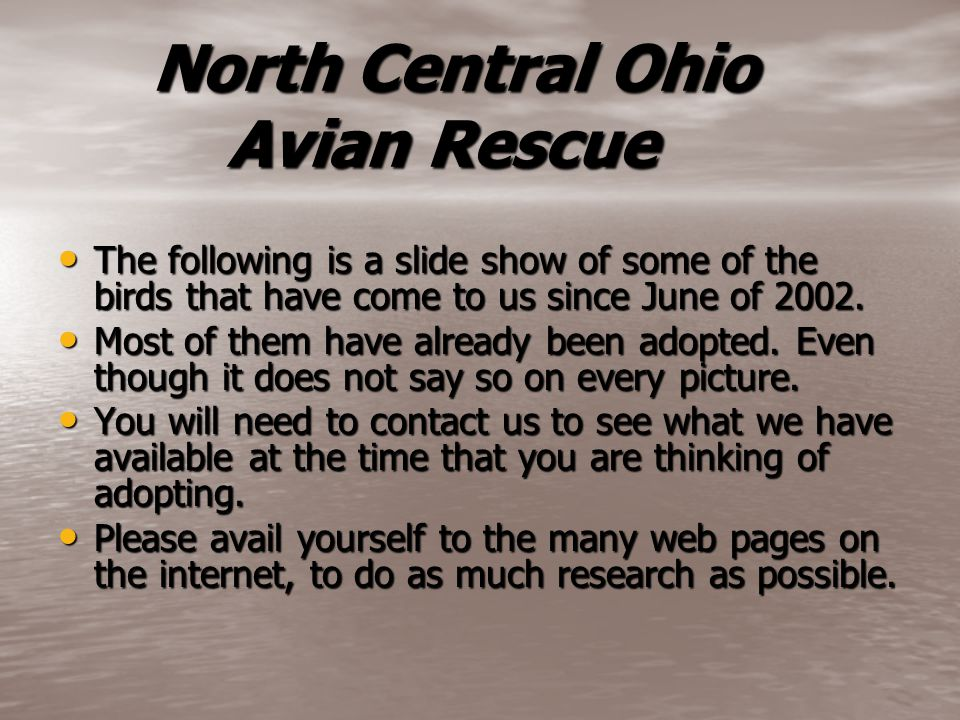 North Central Ohio Avian Rescue North Central Ohio Avian Rescue The following is a slide show of some of the birds that have come to us since June of 2002.