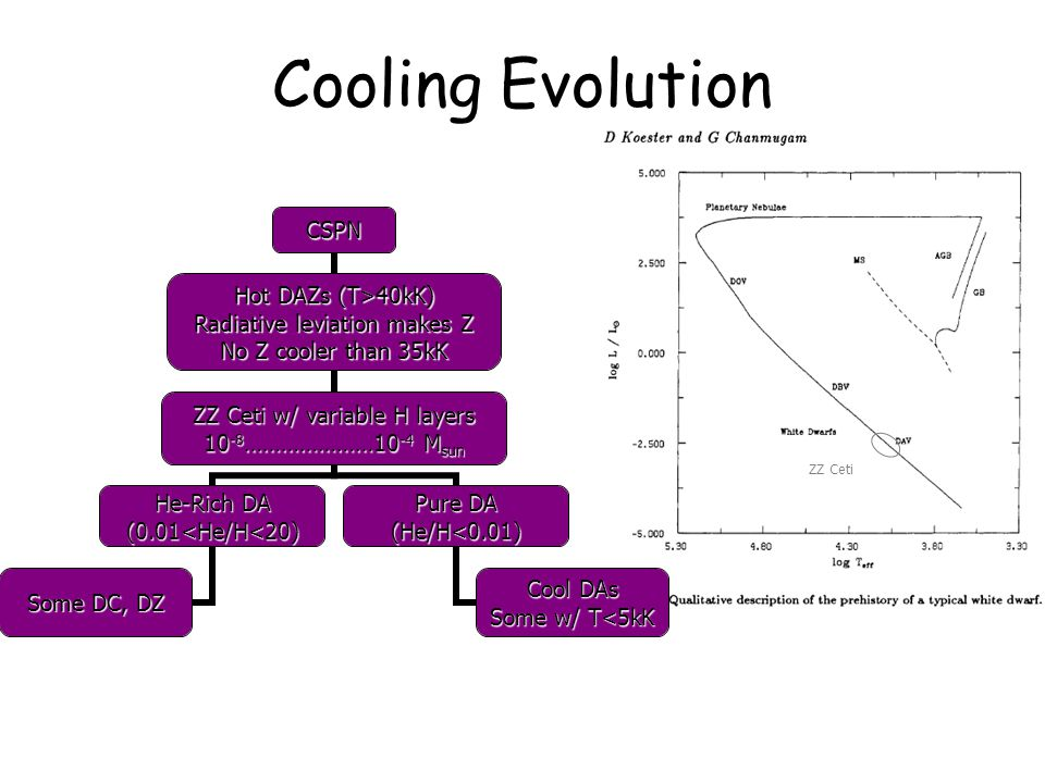 ZZ Ceti Cooling EvolutionCSPN Hot DAZs (T>40kK) Radiative leviation makes Z No Z cooler than 35kK ZZ Ceti w/ variable H layers 10 -8 …………………10 -4 Msun He-Rich DA (0.01<He/H<20) Some DC, DZ Pure DA (He/H<0.01) Cool DAs Some w/ T<5kK