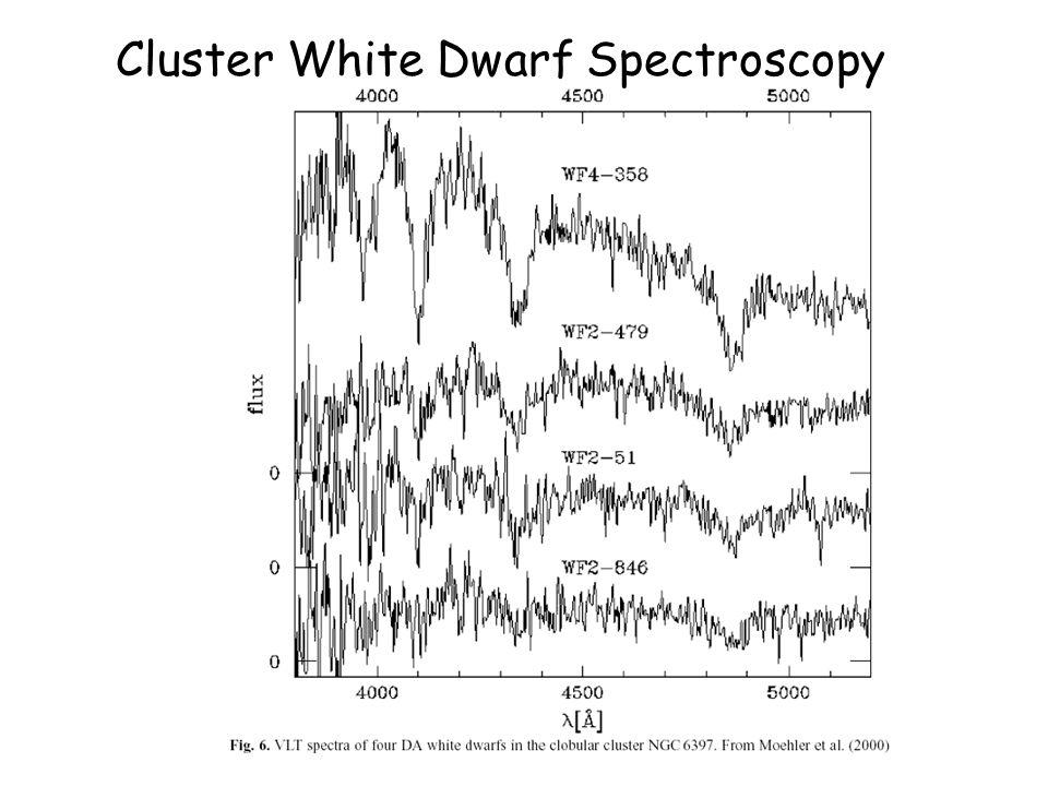 Cluster White Dwarf Spectroscopy
