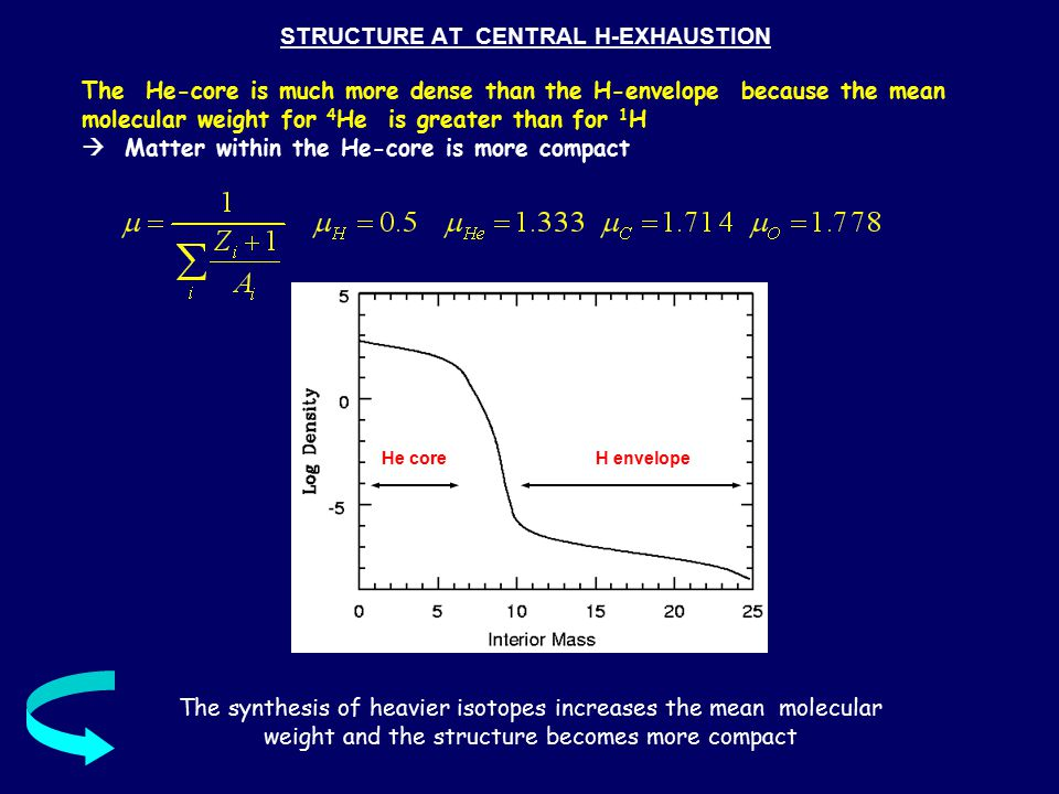 STRUCTURE AT CENTRAL H-EXHAUSTION The He-core is much more dense than the H-envelope because the mean molecular weight for 4 He is greater than for 1