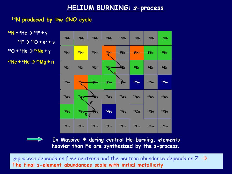 HELIUM BURNING: s-process 84 Se 85 Br 86 Kr 83 As 84 As 85 As 85 Se 86 Se 86 Br 87 Br 87 Kr 88 Kr 73 Ge 74 Ge 75 Ge 76 Ge 74 As 75 As 76 As 72 Ga 73 Ga 77 As 75 Se 76 Se 77 Se 78 Se 79 Se 80 Se 81 Se 82 Se 76 Br 77 Br 78 Br 79 Br 80 Br 81 Br 82 Br 83 Br 77 Kr 78 Kr 79 Kr 80 Kr 81 Kr 82 Kr 83 Kr 84 Kr 80 As 81 As 78 As 79 As 78 Rb 79 Rb 80 Rb 81 Rb 82 Rb 83 Rb 85 Rb 84 Rb 80 Ge 77 Ge 78 Ge 79 Ge 79 Ga 76 Ga 77 Ga 78 Ga 74 Ga 75 Ga n,n,  b-b- b-b- b-b- In Massive  during central He-burning, elements heavier than Fe are synthesized by the s-process.