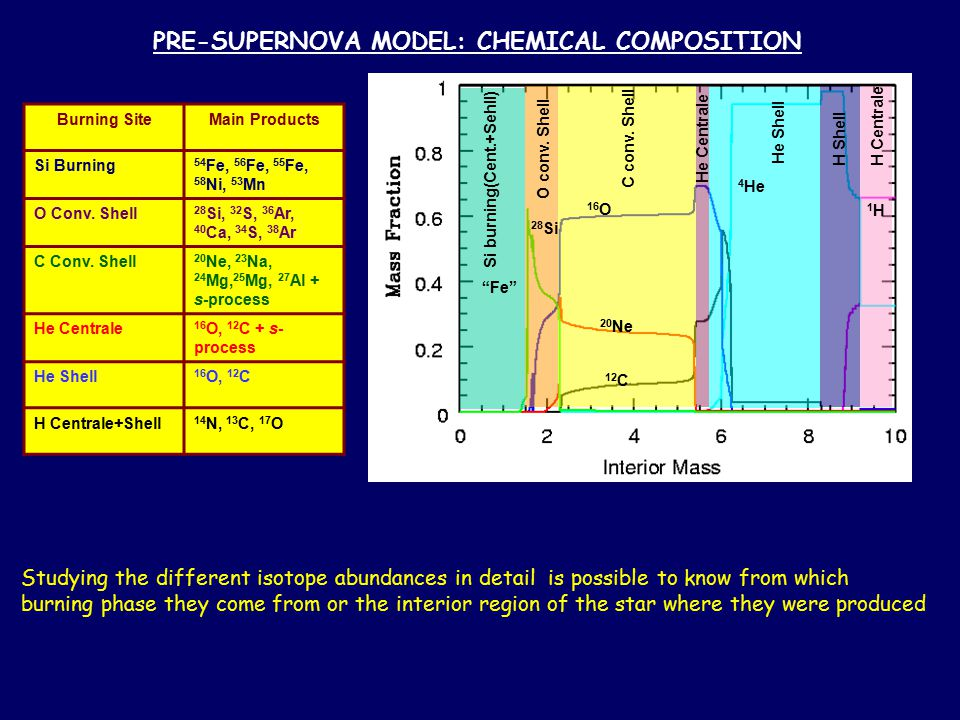 PRE-SUPERNOVA MODEL: CHEMICAL COMPOSITION Burning SiteMain Products Si Burning 54 Fe, 56 Fe, 55 Fe, 58 Ni, 53 Mn O Conv. Shell 28 Si, 32 S, 36 Ar, 40