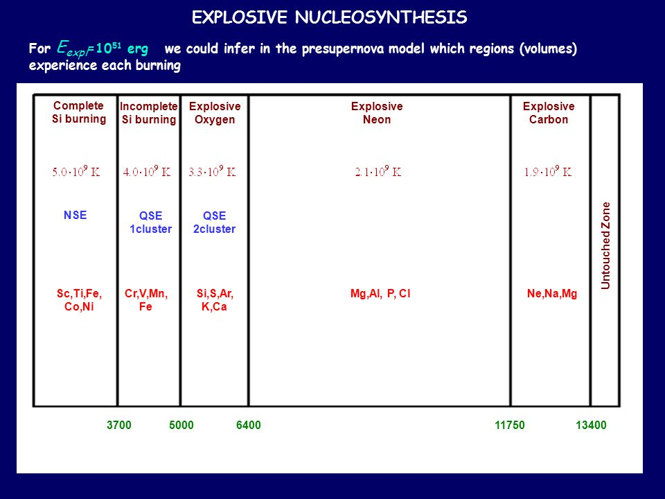 EXPLOSIVE NUCLEOSYNTHESIS For E expl =10 51 erg we could infer in the presupernova model which regions (volumes) experience each burning 37005000 640011750 13400 Complete Si burning Incomplete Si burning Explosive Oxygen Explosive Neon Explosive Carbon Untouched Zone NSE QSE 1cluster QSE 2cluster Ne,Na,MgMg,Al, P, ClSi,S,Ar, K,Ca Cr,V,Mn, Fe Sc,Ti,Fe, Co,Ni