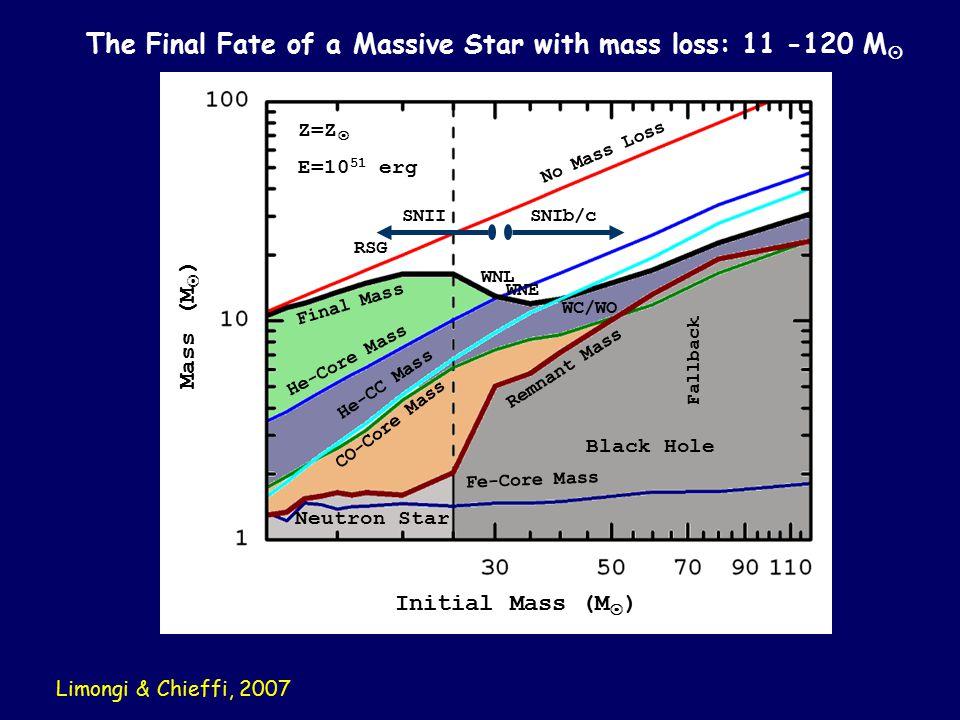 The Final Fate of a Massive Star with mass loss: 11 -120 M  No Mass Loss Final Mass He-Core Mass He-CC Mass CO-Core Mass Fe-Core Mass WNL WNE WC/WO Remnant Mass Neutron Star Black Hole SNIISNIb/c Fallback RSG Z=Z  E=10 51 erg Initial Mass (M  ) Mass (M  ) Limongi & Chieffi, 2007
