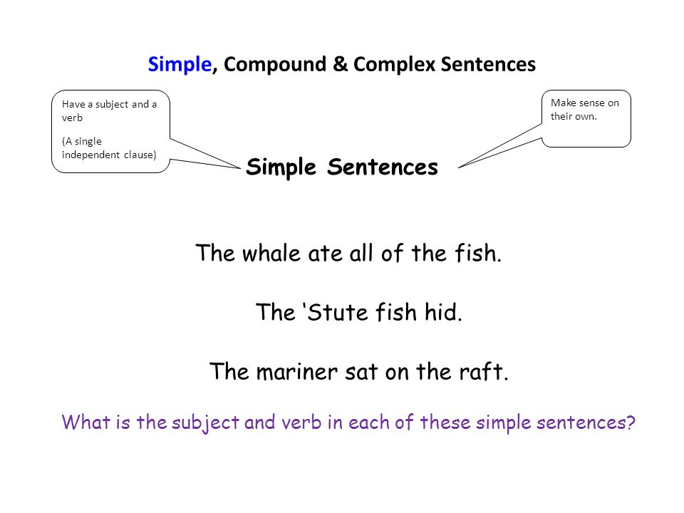Simple, Compound & Complex Sentences Simple Sentences Have a subject and a verb (A single independent clause) Make sense on their own. The whale ate a