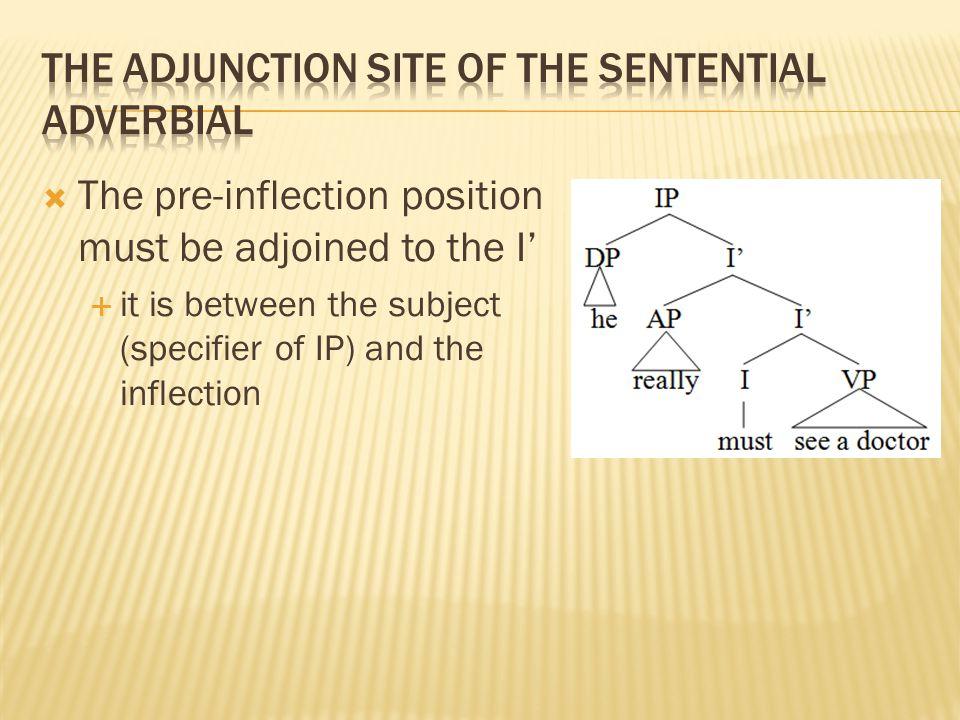  The pre-inflection position must be adjoined to the I'  it is between the subject (specifier of IP) and the inflection