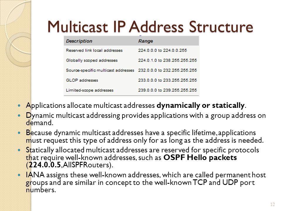 Multicast IP Address Structure Applications allocate multicast addresses dynamically or statically.