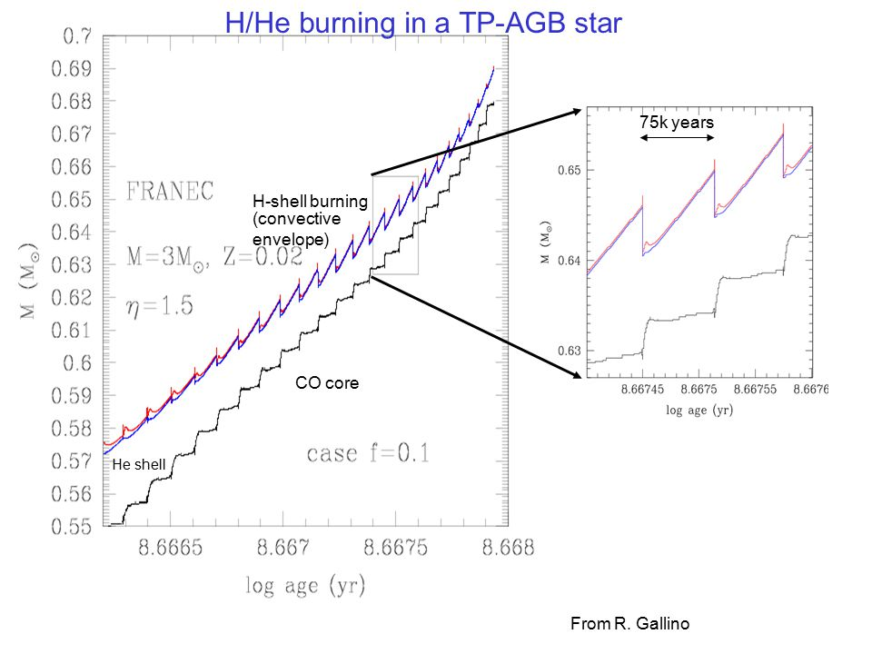 H/He burning in a TP-AGB star number of He flashes in stars life: few – 100 period of flashes: 1000 – 100,000 years s-process in: He flash via 22 Ne( ,n) 13 C pocket via 13 C( ,n) 22 Ne( ,n) 13 C( ,n) 13 C pocket formation by mixing He burning products with H via 12 C + p  13 N  13 C Transport of s-process products to the surface