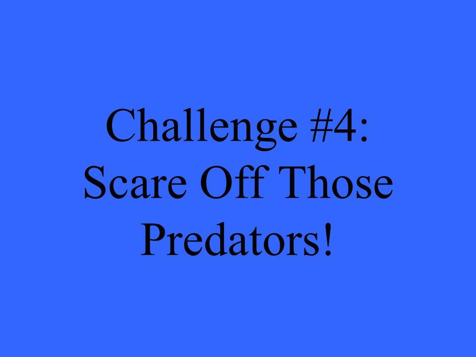 Challenge #4: Scare Off Those Predators!
