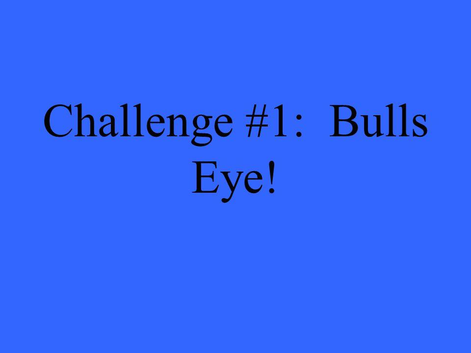 Challenge #1: Bulls Eye!