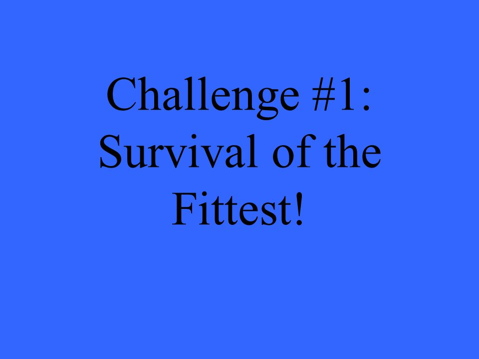 Challenge #1: Survival of the Fittest!