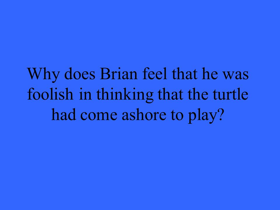 Why does Brian feel that he was foolish in thinking that the turtle had come ashore to play?