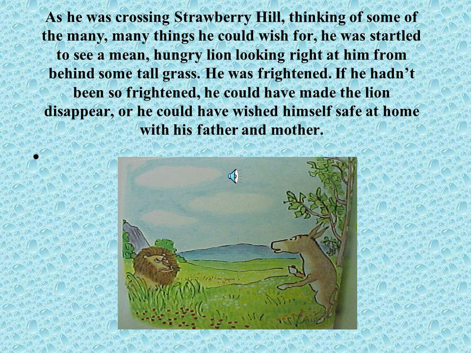 As he was crossing Strawberry Hill, thinking of some of the many, many things he could wish for, he was startled to see a mean, hungry lion looking right at him from behind some tall grass.