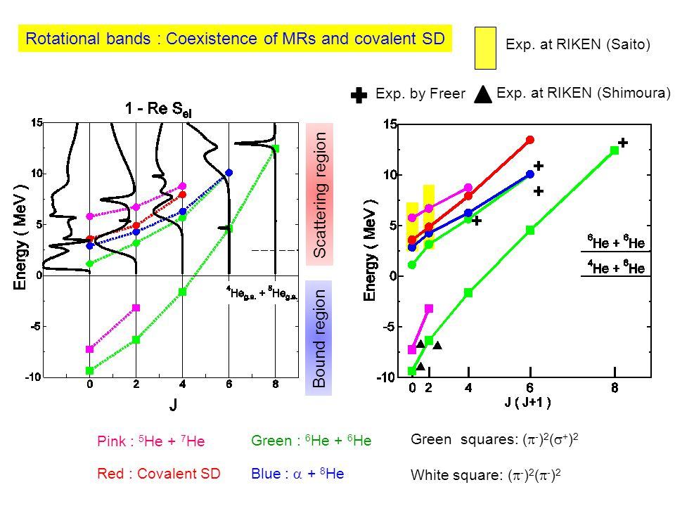 Rotational bands : Coexistence of MRs and covalent SD Exp.
