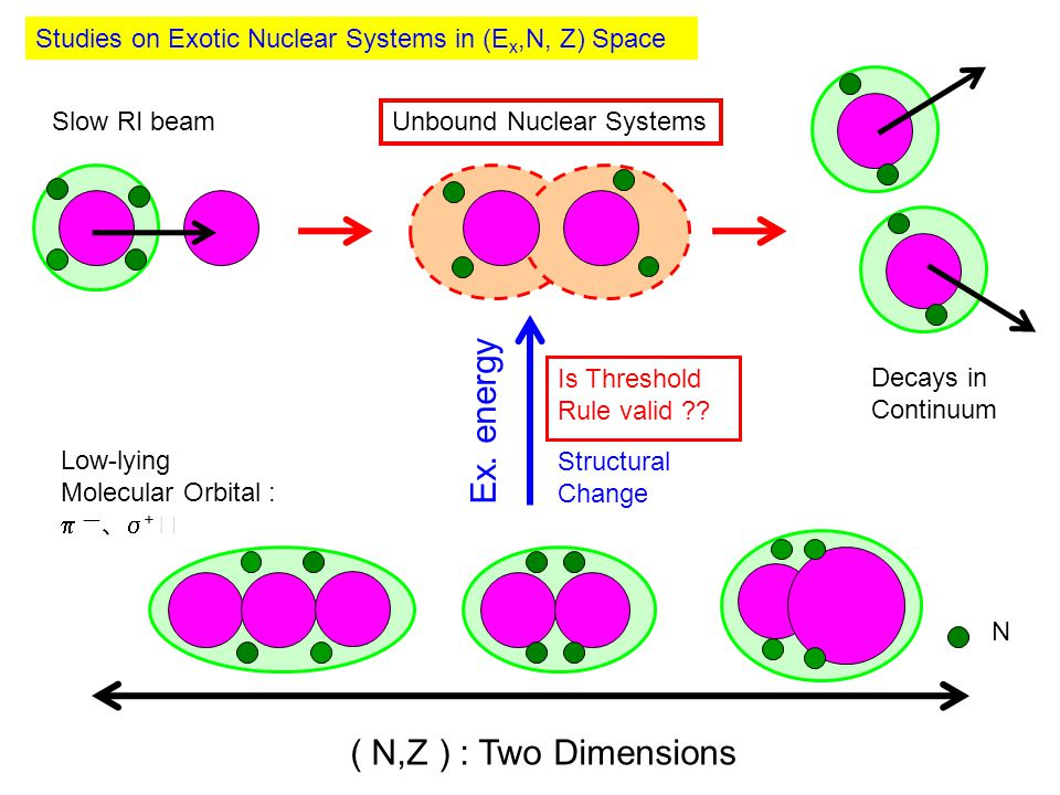 Studies on Exotic Nuclear Systems in (E x,N, Z) Space ( N,Z ) : Two Dimensions Ex.