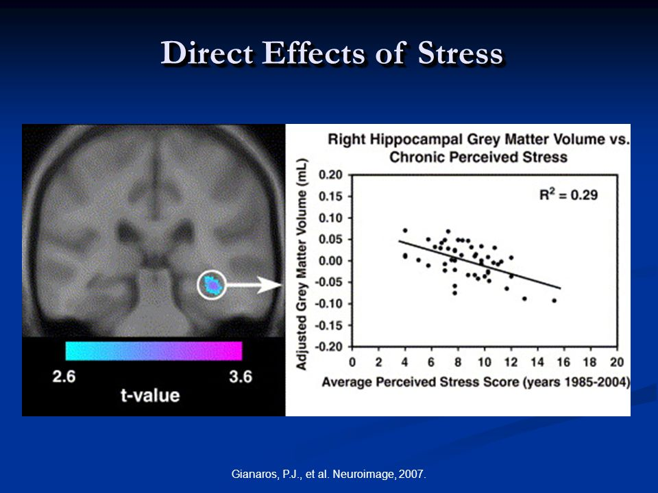 Gianaros, P.J., et al. Neuroimage, 2007. Direct Effects of Stress