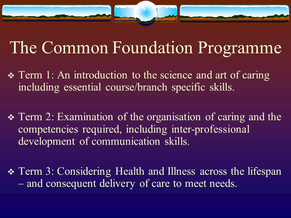 The Common Foundation Programme  Term 1: An introduction to the science and art of caring including essential course/branch specific skills.