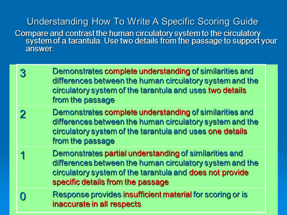 Understanding How To Write A Specific Scoring Guide Compare and contrast the human circulatory system to the circulatory system of a tarantula.
