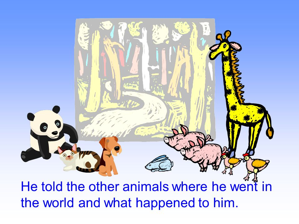 He told the other animals where he went in the world and what happened to him.
