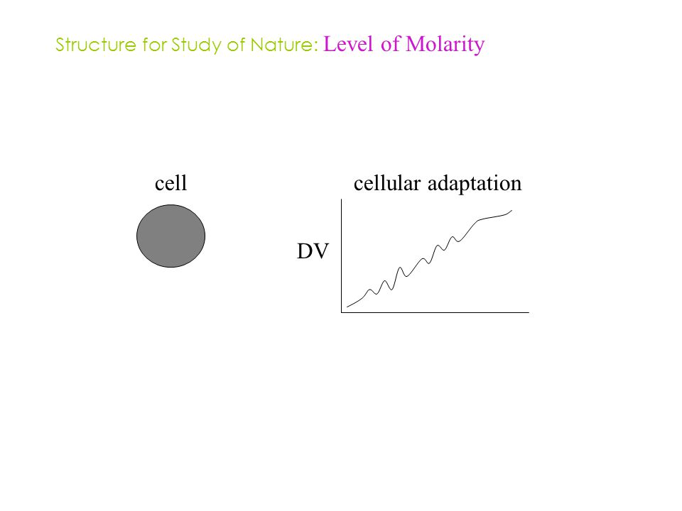 Structure for Study of Nature: Level of Molarity cellcellular adaptation DV