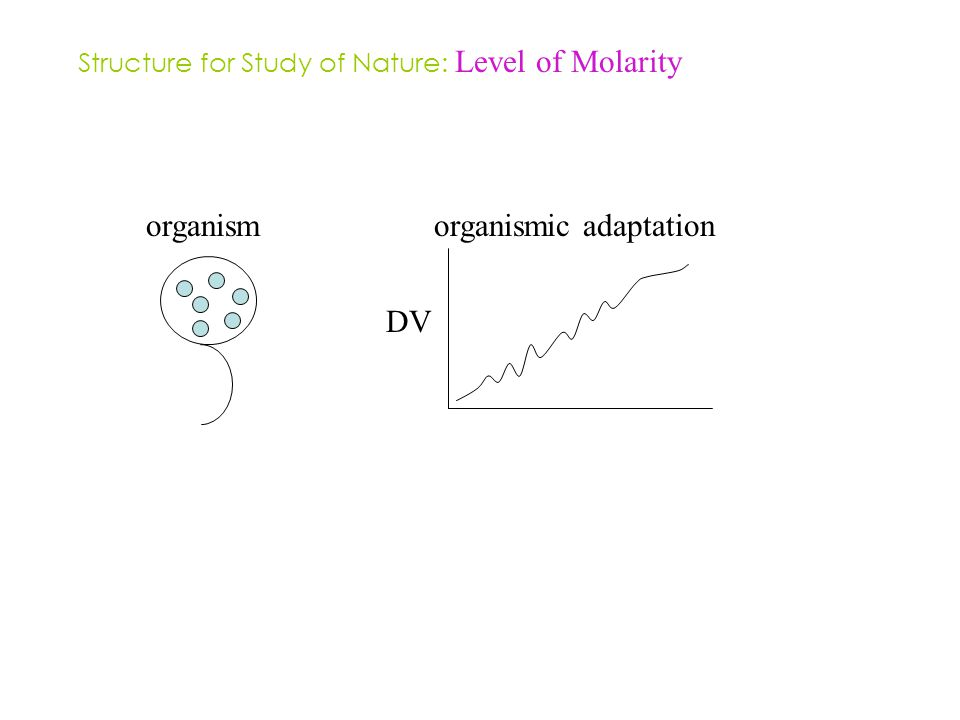 organismorganismic adaptation DV Structure for Study of Nature: Level of Molarity