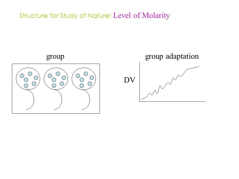 groupgroup adaptation DV Structure for Study of Nature: Level of Molarity