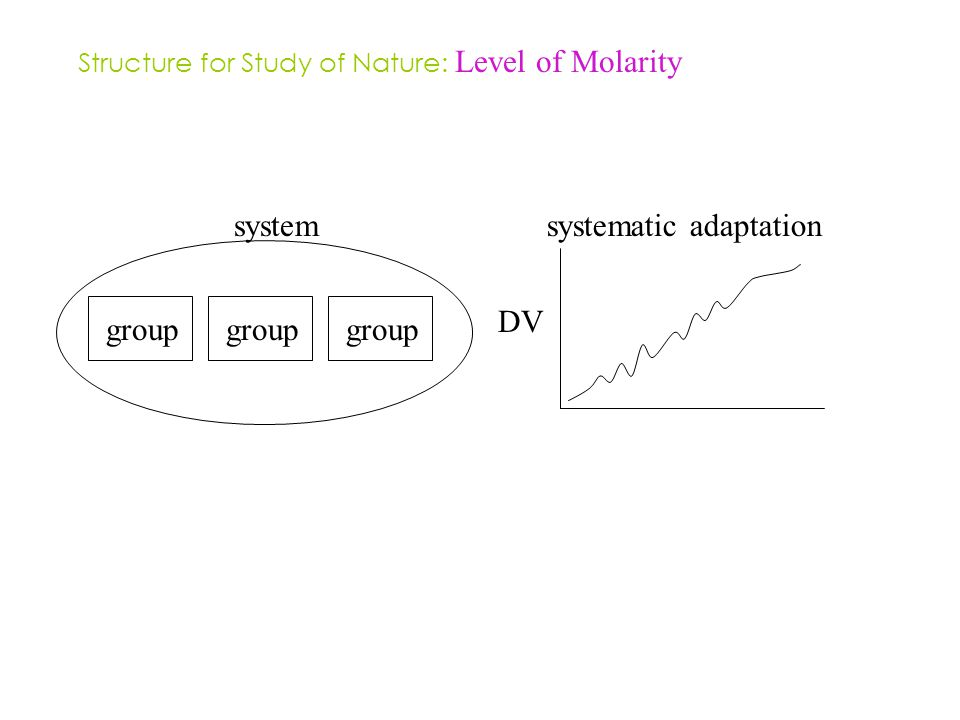 group systematic adaptation DV group system Structure for Study of Nature: Level of Molarity
