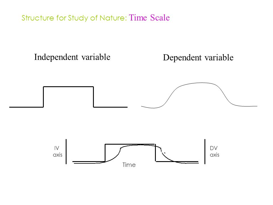 Structure for Study of Nature: Time Scale Independent variable Dependent variable IV axis DV axis Time