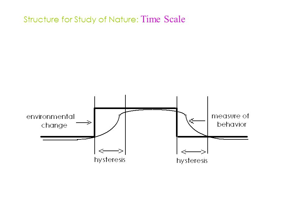 Structure for Study of Nature: Time Scale