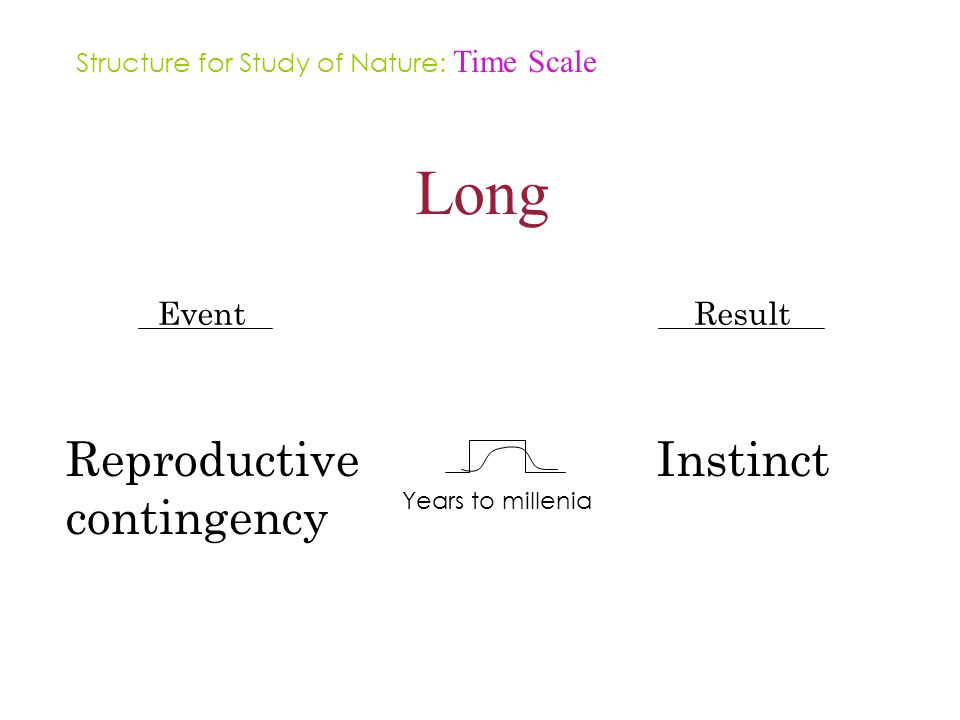 Long Event Reproductive contingency Result Instinct Years to millenia Structure for Study of Nature: Time Scale